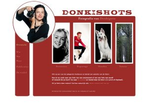 Wordpress website - donkishots